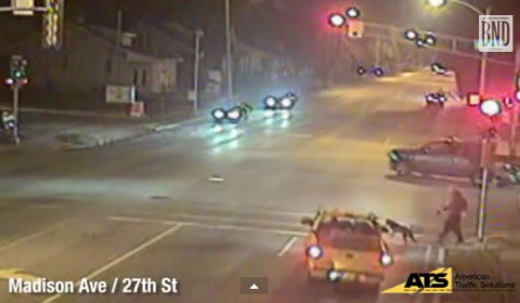 Video_RedLightRunner_Dog_GraniteCity_Illinois_2ndShot_121614